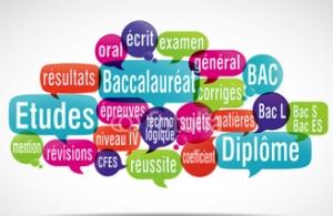 Soutien scolaire cours particuliers français
